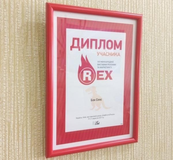 Диплом участника Rex 2017