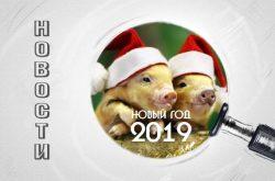 З Новим роком 2019