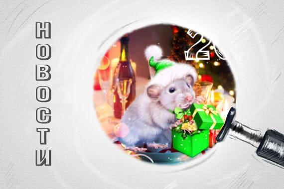 График работы bon sens новогодние праздники 2020
