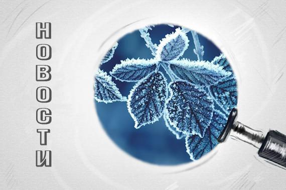 Нові клієнти BonSens зима 20-21